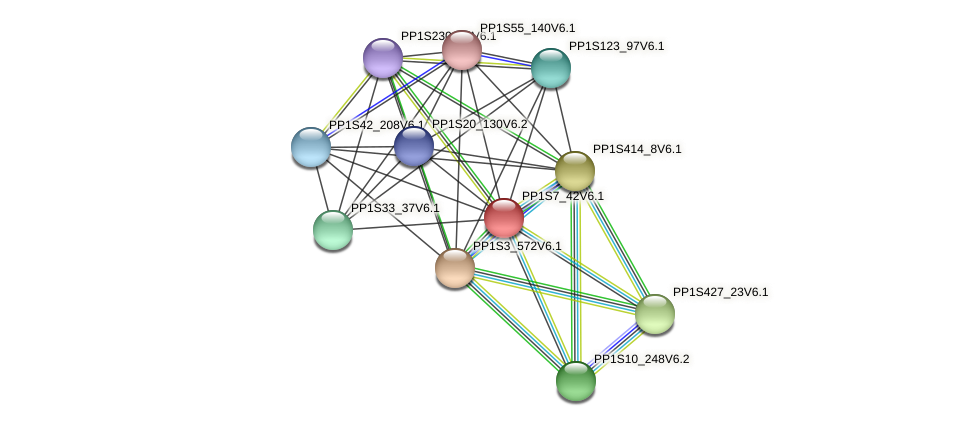 PP1S7_42V6.1 protein (Physcomitrella patens) - STRING interaction network