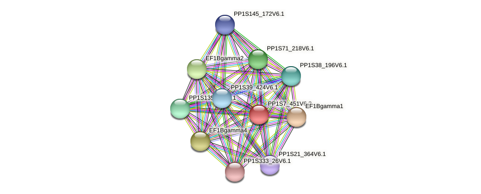 PP1S7_451V6.1 protein (Physcomitrella patens) - STRING interaction network