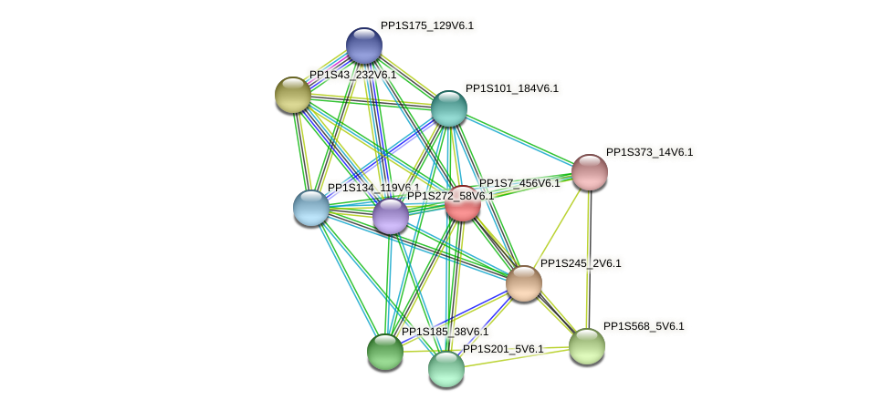 PP1S7_456V6.1 protein (Physcomitrella patens) - STRING interaction network