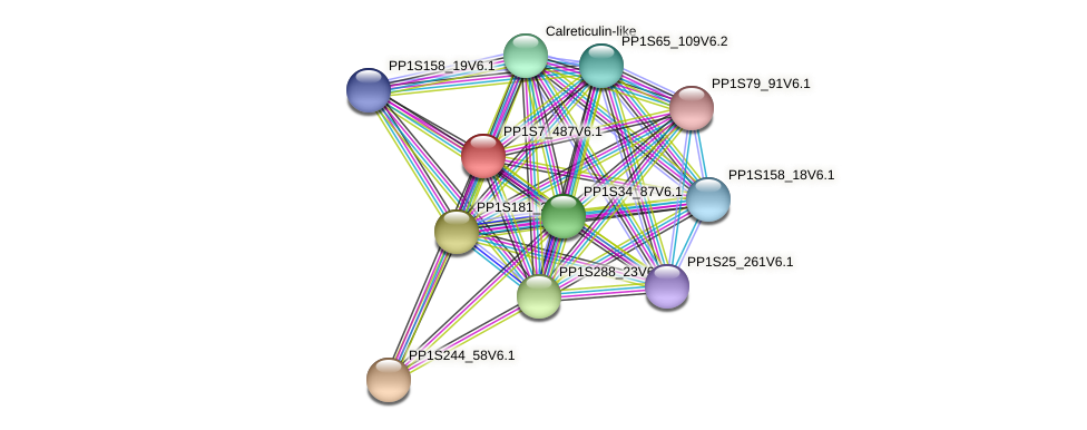 PP1S7_487V6.1 protein (Physcomitrella patens) - STRING interaction network