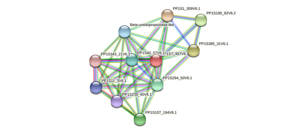 PP1S7_497V6.1 protein (Physcomitrella patens) - STRING interaction network