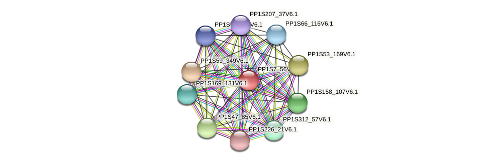 PP1S7_56V6.1 protein (Physcomitrella patens) - STRING interaction network