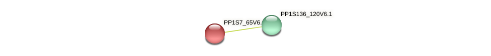 PP1S7_65V6.1 protein (Physcomitrella patens) - STRING interaction network