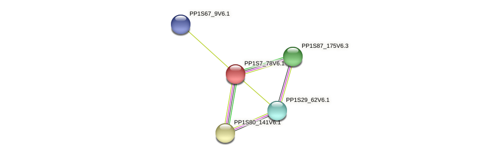 PP1S7_78V6.1 protein (Physcomitrella patens) - STRING interaction network