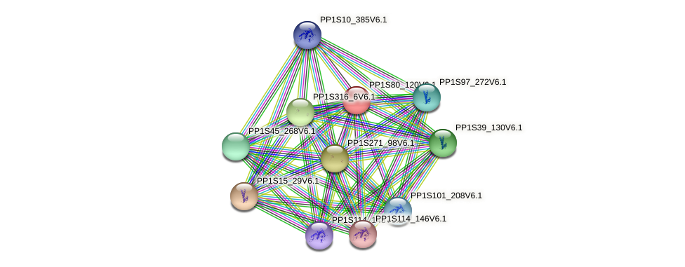 PP1S80_120V6.1 protein (Physcomitrella patens) - STRING interaction network