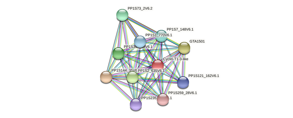 PP1S80_193V6.1 protein (Physcomitrella patens) - STRING interaction network