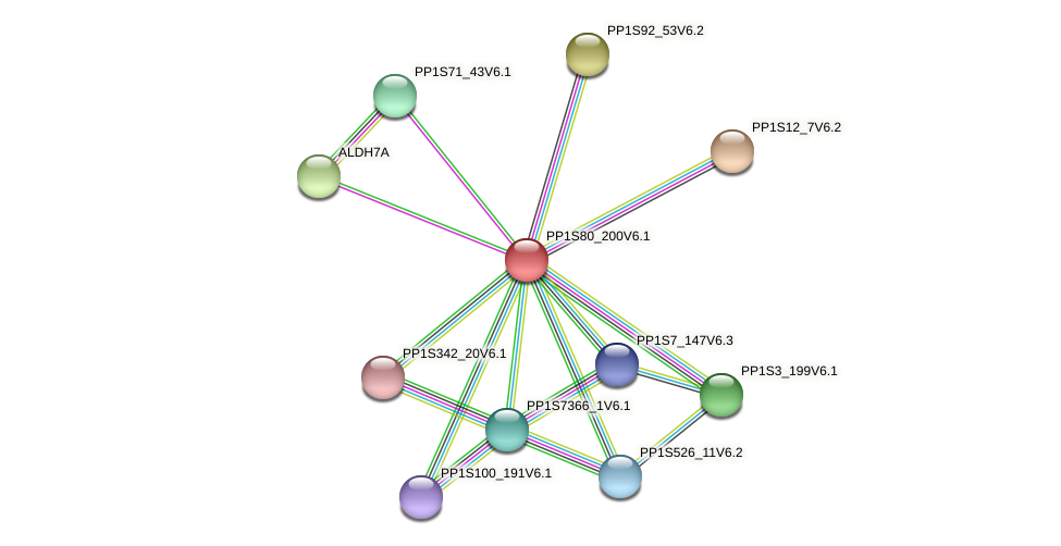 PP1S80_200V6.1 protein (Physcomitrella patens) - STRING interaction network