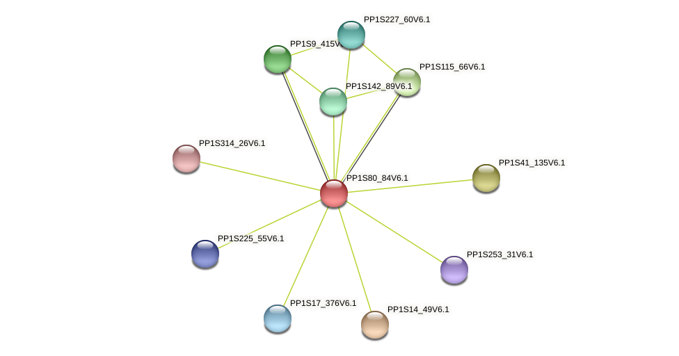 PP1S80_84V6.1 protein (Physcomitrella patens) - STRING interaction network
