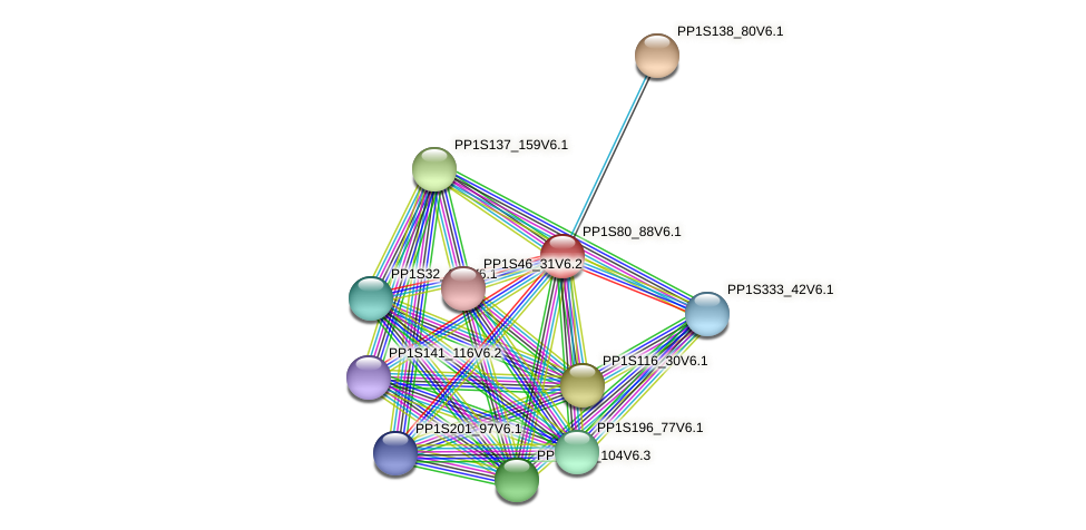 PP1S80_88V6.1 protein (Physcomitrella patens) - STRING interaction network