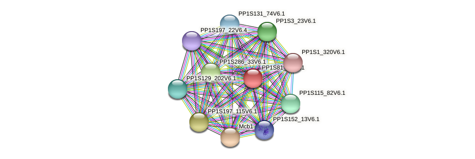PP1S81_11V6.1 protein (Physcomitrella patens) - STRING interaction network