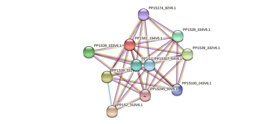 PP1S81_194V6.1 protein (Physcomitrella patens) - STRING interaction network
