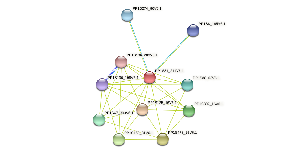 PP1S81_211V6.1 protein (Physcomitrella patens) - STRING interaction network