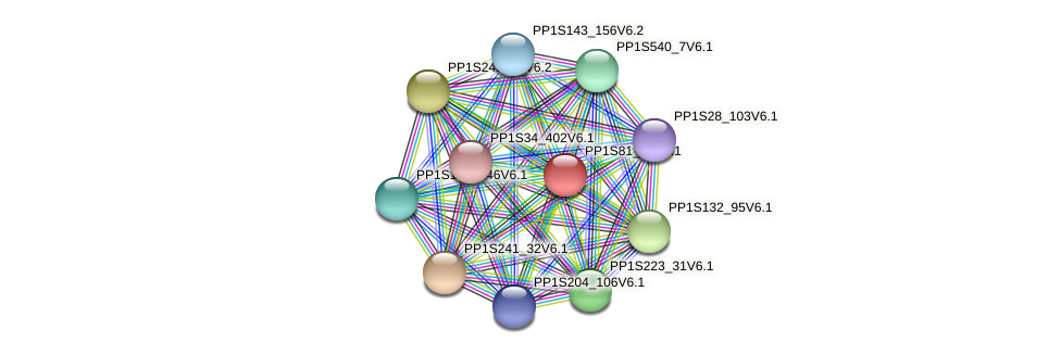PP1S81_46V6.1 protein (Physcomitrella patens) - STRING interaction network