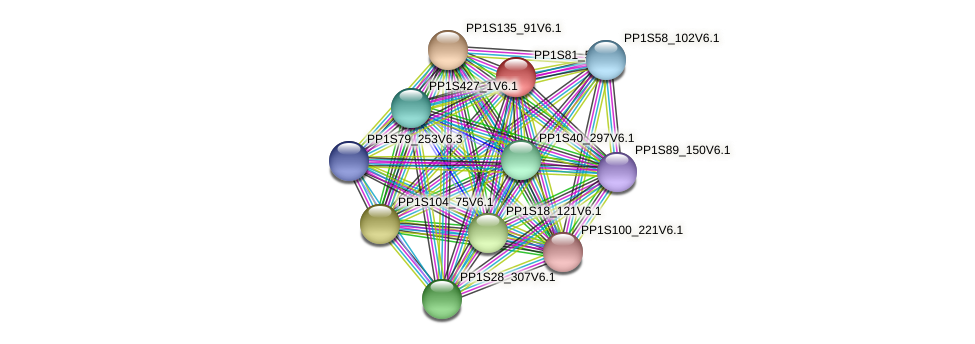PP1S81_57V6.1 protein (Physcomitrella patens) - STRING interaction network