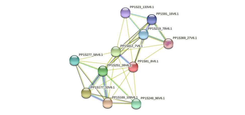 PP1S81_8V6.1 protein (Physcomitrella patens) - STRING interaction network