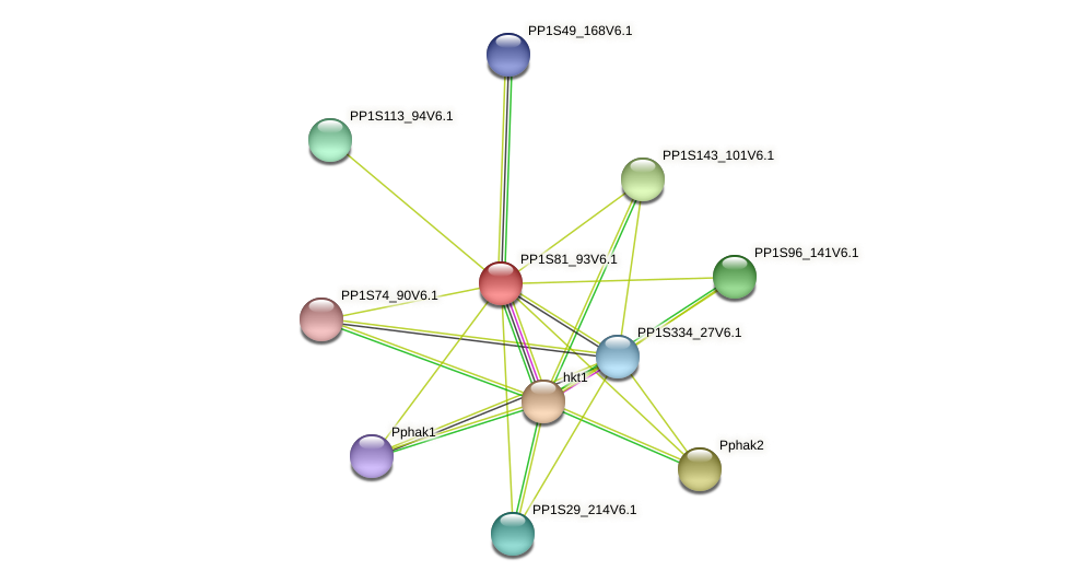 PP1S81_93V6.1 protein (Physcomitrella patens) - STRING interaction network