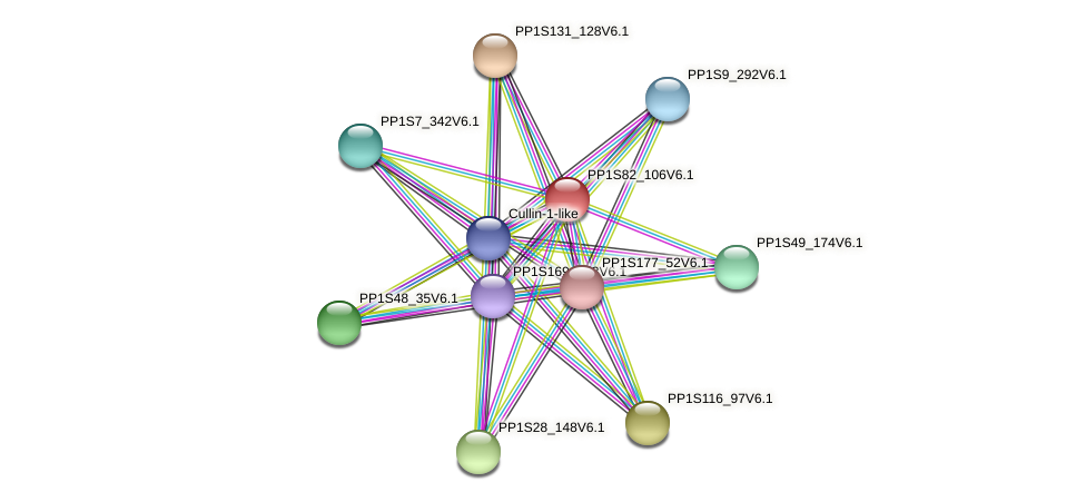 PP1S82_106V6.1 protein (Physcomitrella patens) - STRING interaction network