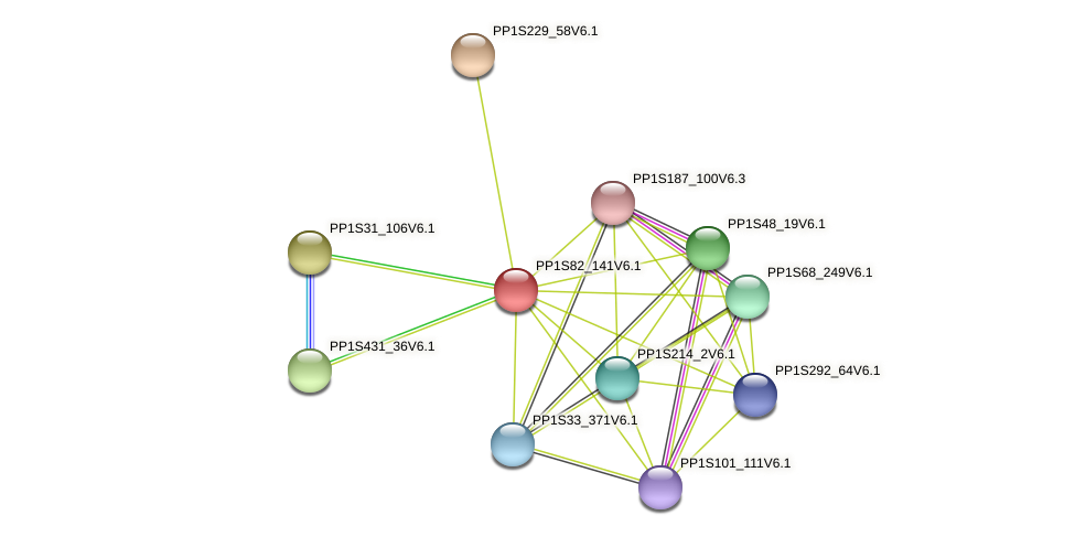 PP1S82_141V6.1 protein (Physcomitrella patens) - STRING interaction network