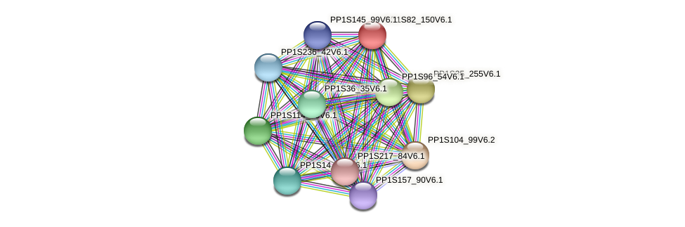 PP1S82_150V6.1 protein (Physcomitrella patens) - STRING interaction network