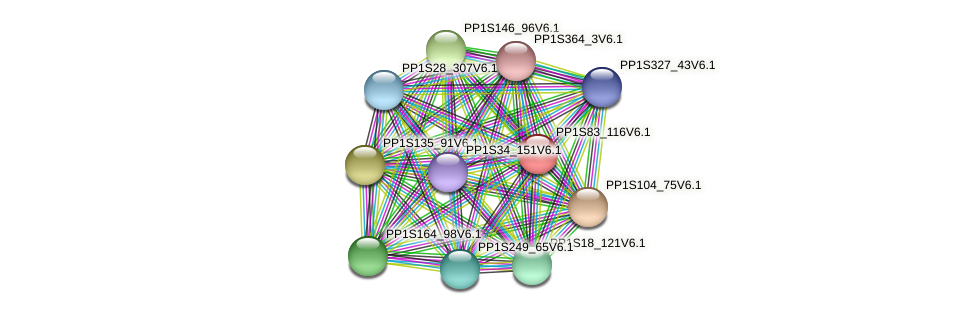 PP1S83_116V6.1 protein (Physcomitrella patens) - STRING interaction network