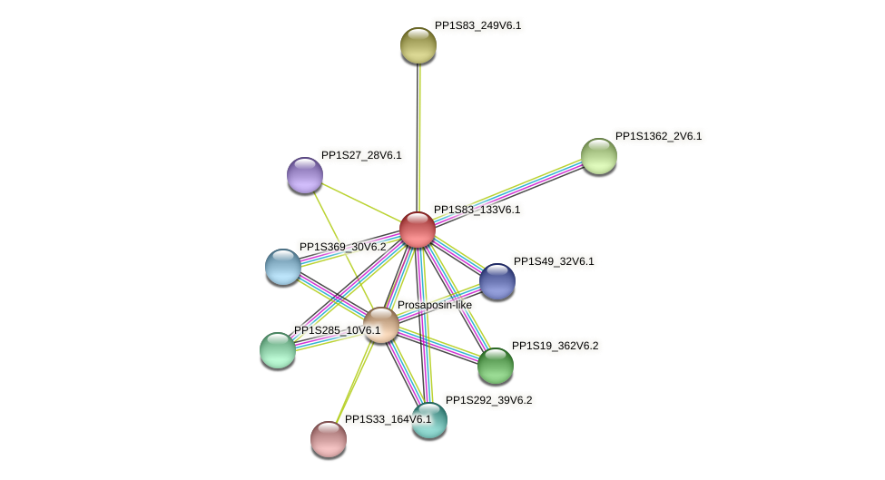 PP1S83_133V6.1 protein (Physcomitrella patens) - STRING interaction network