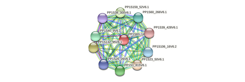 PP1S83_144V6.1 protein (Physcomitrella patens) - STRING interaction network