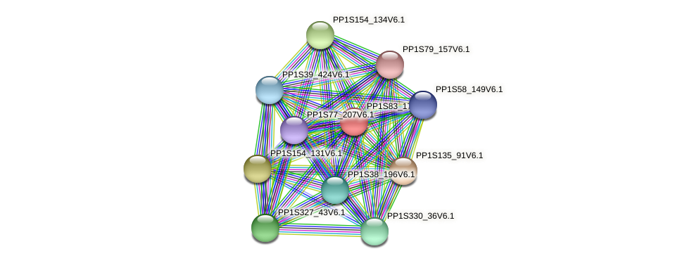 PP1S83_174V6.1 protein (Physcomitrella patens) - STRING interaction network