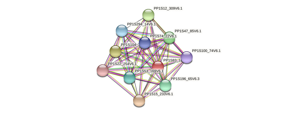 PP1S83_180V6.1 protein (Physcomitrella patens) - STRING interaction network