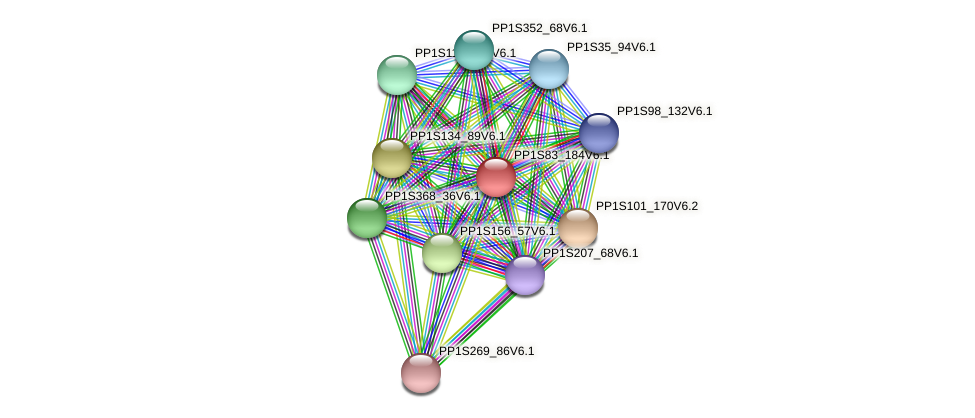 PP1S83_184V6.1 protein (Physcomitrella patens) - STRING interaction network