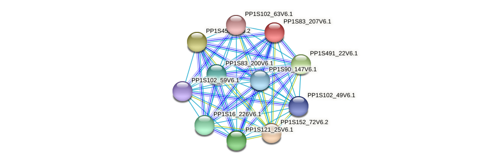 PP1S83_207V6.1 protein (Physcomitrella patens) - STRING interaction network