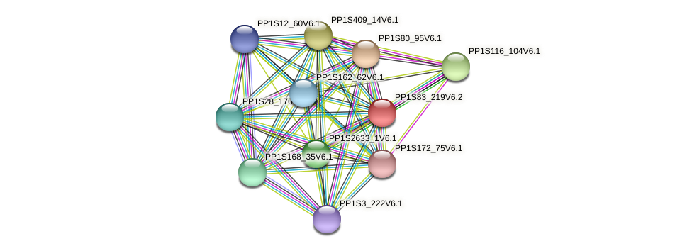 PP1S83_219V6.1 protein (Physcomitrella patens) - STRING interaction network