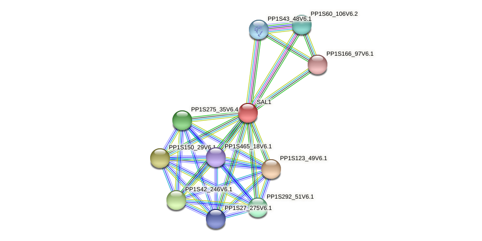 PP1S83_223V6.3 protein (Physcomitrella patens) - STRING interaction network
