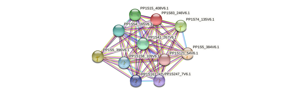 PP1S83_246V6.1 protein (Physcomitrella patens) - STRING interaction network
