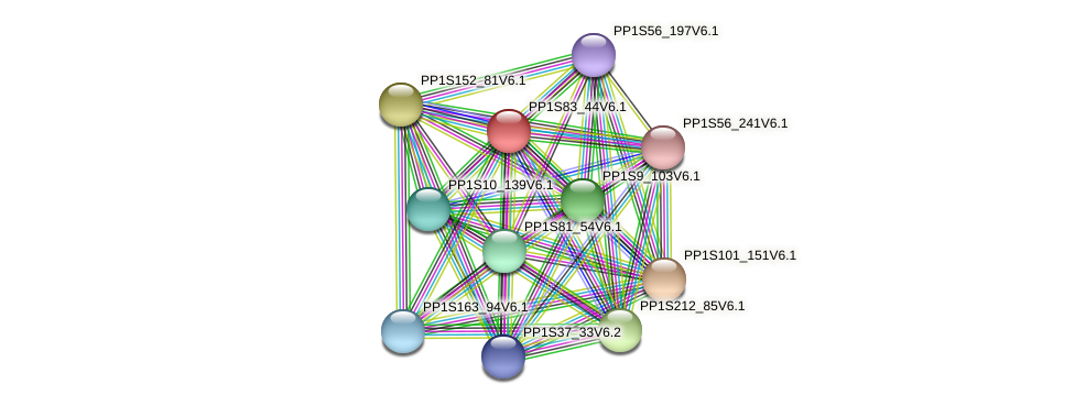 PP1S83_44V6.1 protein (Physcomitrella patens) - STRING interaction network
