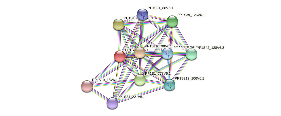 PP1S83_4V6.1 protein (Physcomitrella patens) - STRING interaction network