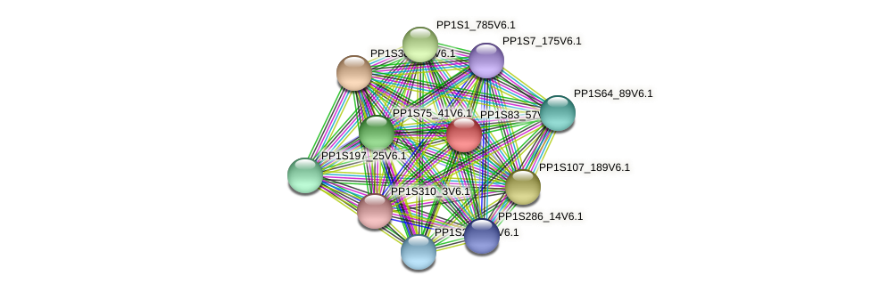 PP1S83_57V6.1 protein (Physcomitrella patens) - STRING interaction network