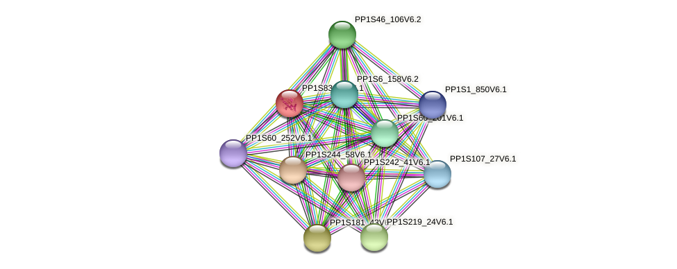 PP1S83_80V6.1 protein (Physcomitrella patens) - STRING interaction network