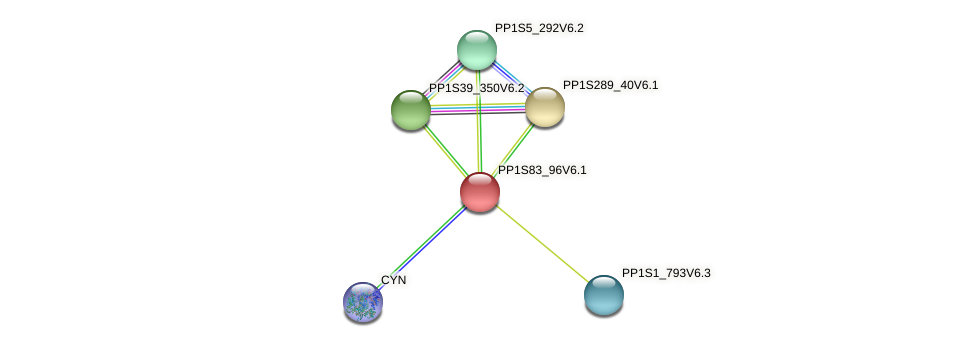 PP1S83_96V6.1 protein (Physcomitrella patens) - STRING interaction network