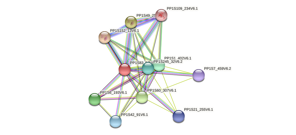 PP1S83_97V6.1 protein (Physcomitrella patens) - STRING interaction network