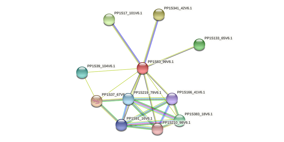 PP1S83_99V6.1 protein (Physcomitrella patens) - STRING interaction network