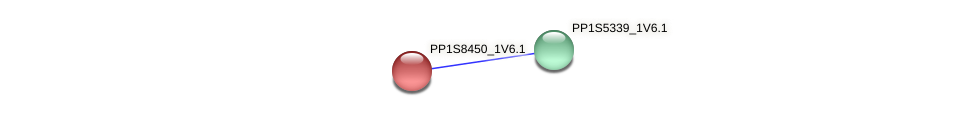 PP1S8450_1V6.1 protein (Physcomitrella patens) - STRING interaction network