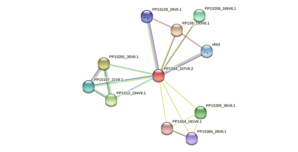 PP1S84_107V6.2 protein (Physcomitrella patens) - STRING interaction network