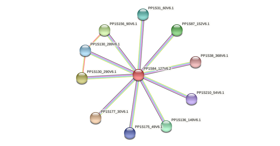 PP1S84_127V6.1 protein (Physcomitrella patens) - STRING interaction network