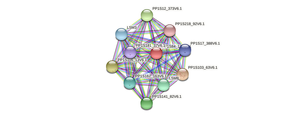 PP1S84_179V6.1 protein (Physcomitrella patens) - STRING interaction network
