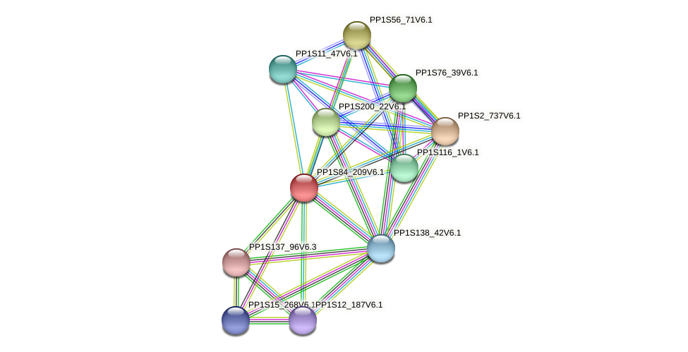 PP1S84_209V6.1 protein (Physcomitrella patens) - STRING interaction network