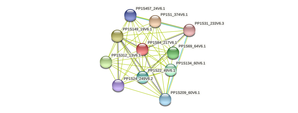 PP1S84_217V6.1 protein (Physcomitrella patens) - STRING interaction network