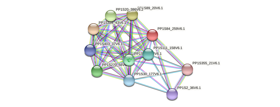 CHR1541 protein (Physcomitrella patens) - STRING interaction network