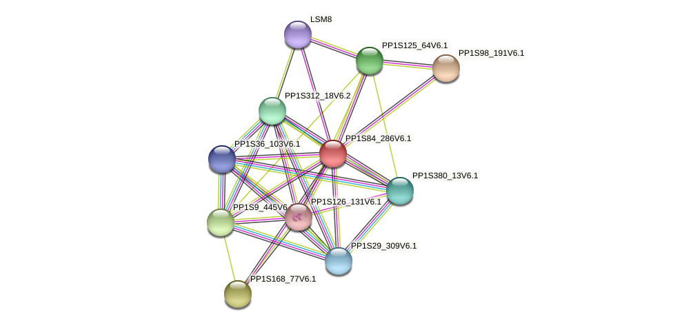 PP1S84_286V6.1 protein (Physcomitrella patens) - STRING interaction network