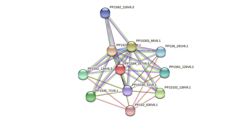 PP1S84_287V6.6 protein (Physcomitrella patens) - STRING interaction network