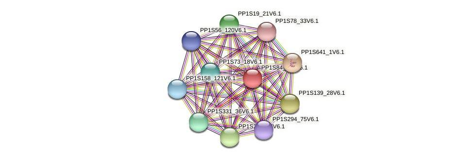 PP1S84_297V6.1 protein (Physcomitrella patens) - STRING interaction network